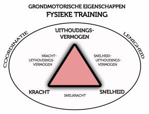 grondmotorische eigenschappen